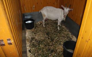 Как можно использовать помет скота