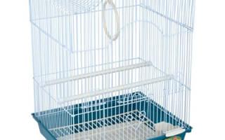 Деревянные клетки для птиц: плюсы и минусы использования