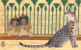 Значение кошки в древнем Египте