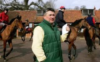 Скачки на лошадях: выбор лошади