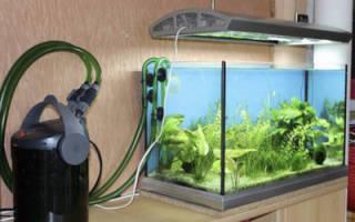 Как работает фильтр для аквариума