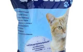 Плюсы и минусы силикагелевого наполнителя кошачьих туалетов