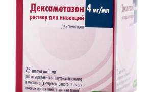 Рекомендации ветеринаров по приему дексаметазона: дозировка для собак