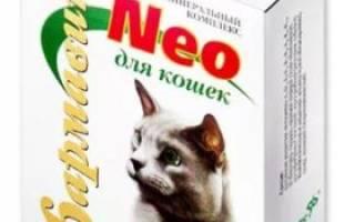Какие витамины для котят лучше