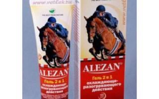 Суставная мазь для лошадей: полезные советы