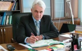 Куры Украины: разведение кур в Украине