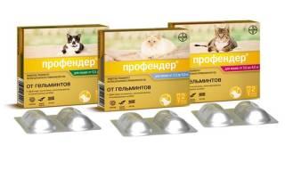 Профендер для кошек: эффективное действие